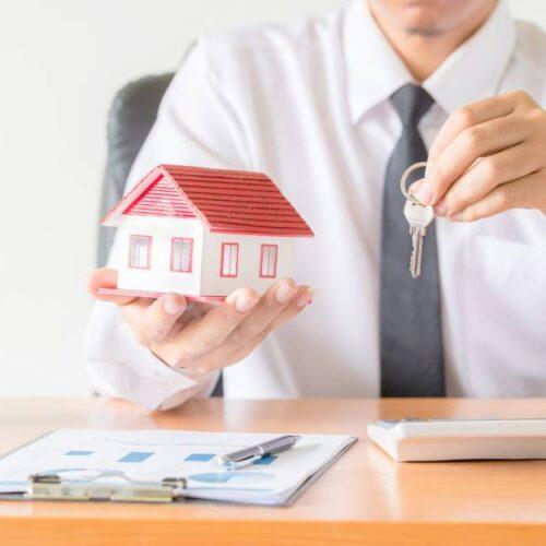 plsa immobilier